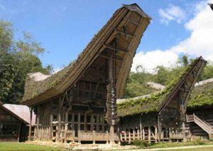 Aegis of Sulawesi