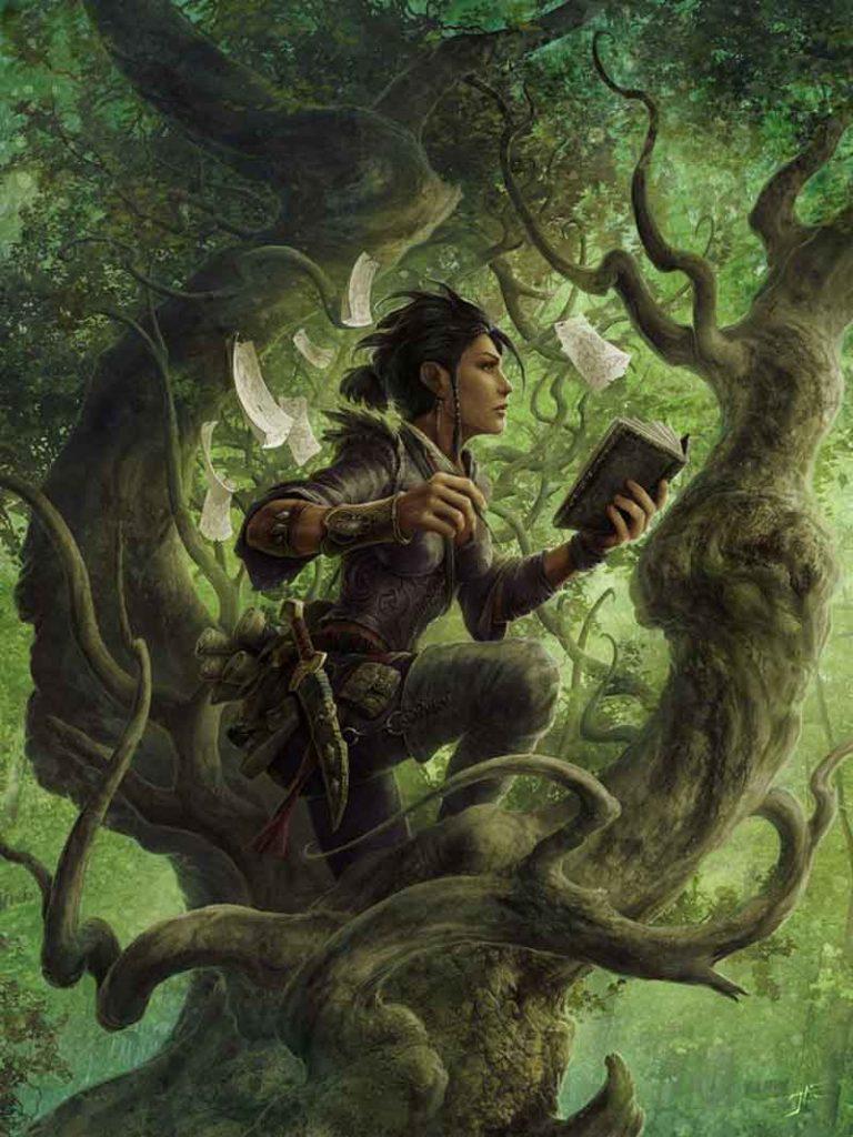 Navigator of Druid