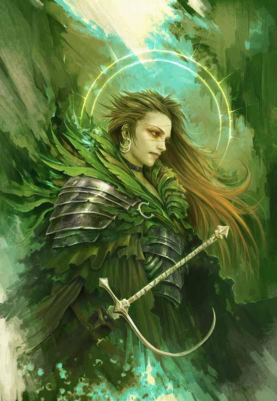 Navigator of Gawain