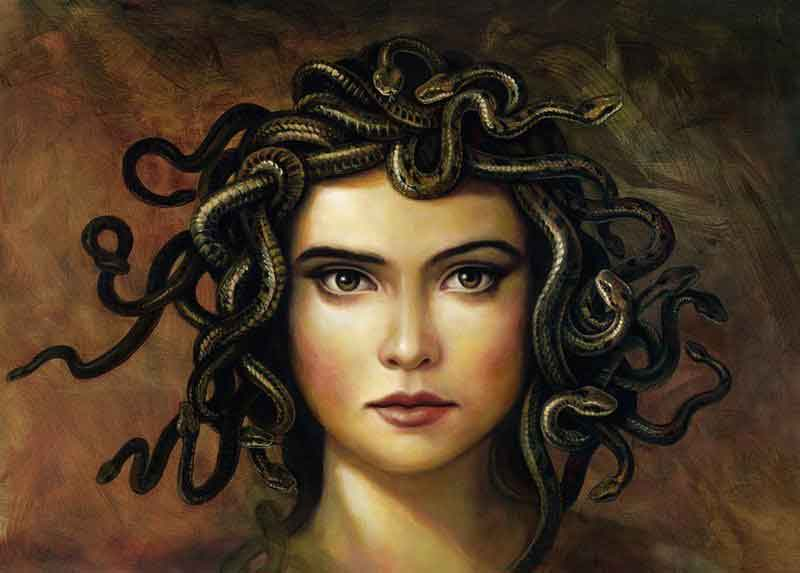Bean's of Medusa